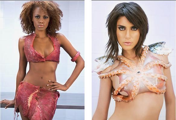 Dayse Lima, Carolline Vieira